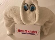 royal-welcome-back