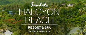 Preview Image - Halcyon Beach